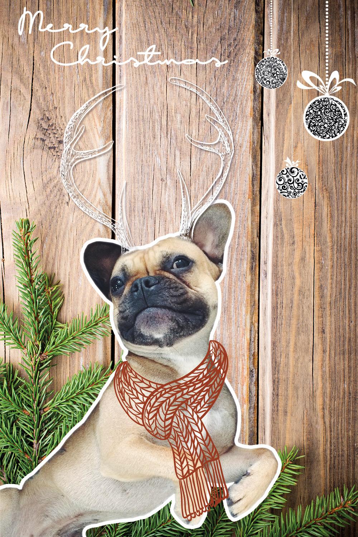 who is mocca, fashionblog, beautyblog, interioblog, lifestyleblog, blogger tirol, weihnachten, französiche bulldogge, reindeer, sketch