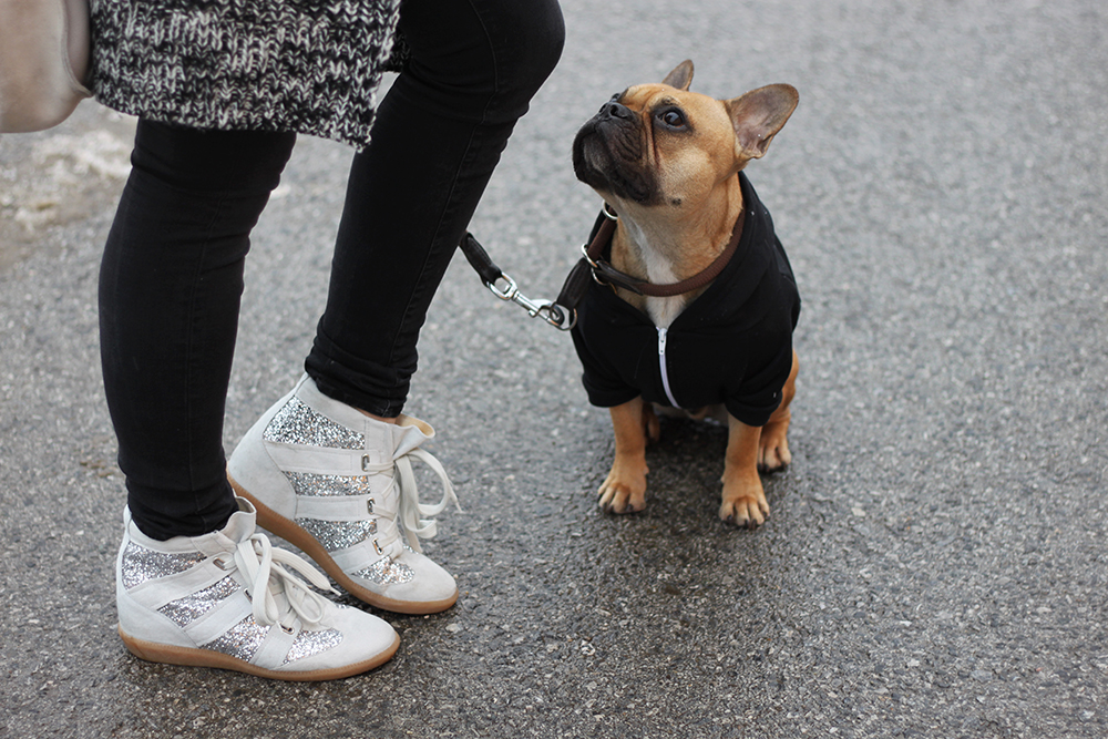 who is mocca, blogger tirol, fashionblog, beautyblog, interiorblog, ootd, französische bulldogge, french bulldog, fawn, american apparel, zara, materialmix, sneaker wedges, manas, sarenza, isabel marant lookalikes, rote lippen mac viva glam, shopper veloursleder zara,