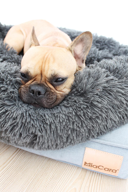 who is mocca, blogger, tirol, mode, austria, oesterreich, valentierstag, lifestyleblog, frenchie, bulldog, schoener wohnen mit hund, interior, hundekissen, hundeplatz, miacara, ankleideraum, schlafzimmer, hundedecke, husky, franzoesische bulldogge