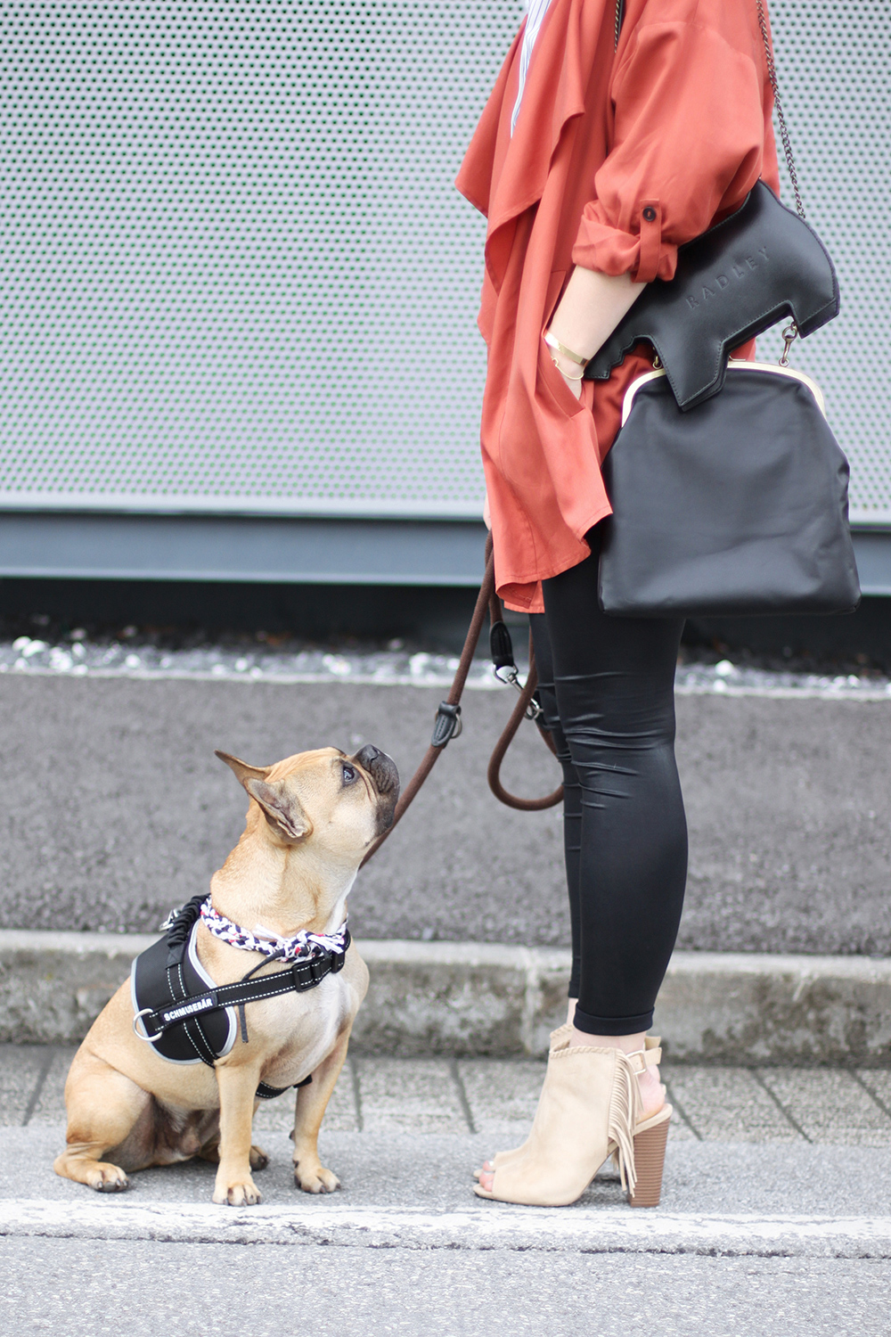 who is mocca, modeblog, fashionblog, german blogger, austrian blogger, marsala trench coat, frenchie, justfab booties, fringe boots, marsala trendfarbe 2015 kombinieren, innsbruck dez streetstyle, radley london dog bag, whoismocca.com