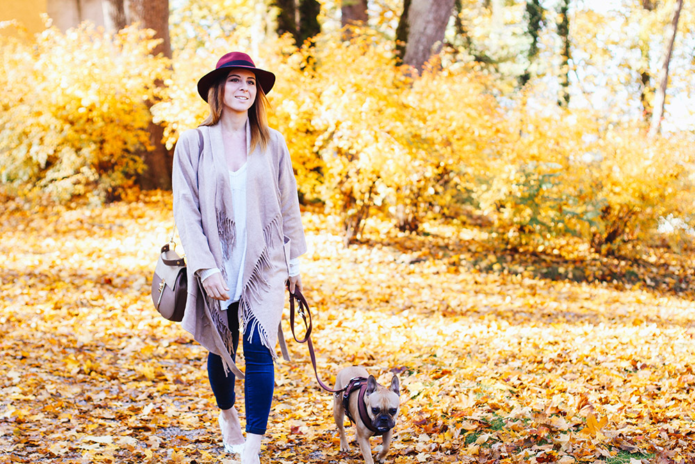 who is mocca, modeblog, fashionblog, herbstoutfit inspiration, fransenjacke outfit, fransenjacke kombinieren, frenchie, schloss ambras, innsbruck, streetstyle, river island pumps, fedora christy madison, chloe dupe lookalike, whoismocca.com