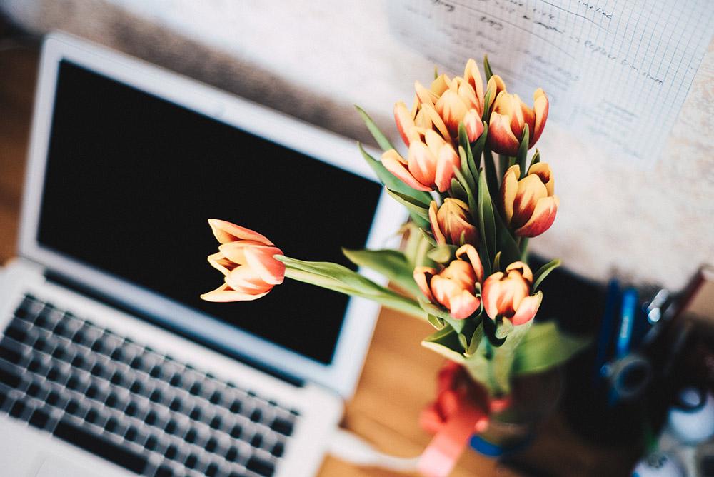 Den eigenen Blog bekannter machen! 11 Tipps für mehr Reichweite! Blogger Tipps, Lifestyle Blog, whoismocca.com