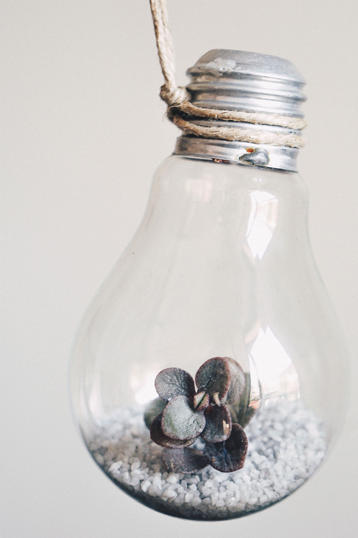 Gluehbirnen vase diy mit pflanzen pinterest anleitung tutorial interior blog magazin whoismocca 21