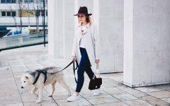 Back to Basics, Basic Outfit, Levis Shirt, Jeans, Adidas Gazelle Sneaker, Trenchcoat, Buffalo Tasche bordeaux, sibirischer Husky, Fashion Blog, Outfit Blog, Modemagazin, whoismocca.com