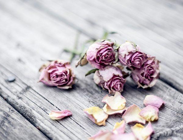 Valentinstag, Good to know, romantische Ideen, Gift Guide, Geschenke für Sie und Ihn, Lifestyle Blog, whoismocca.com