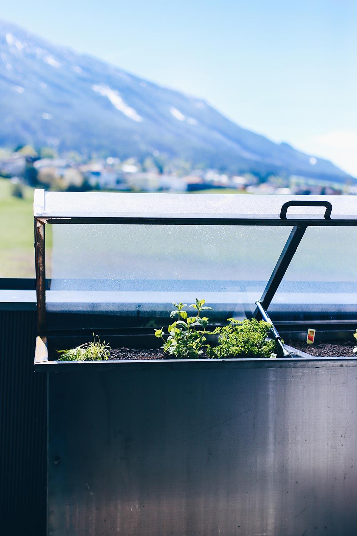hochbeet tipps anlegen bepflanzen und leckeres gem se ernten. Black Bedroom Furniture Sets. Home Design Ideas