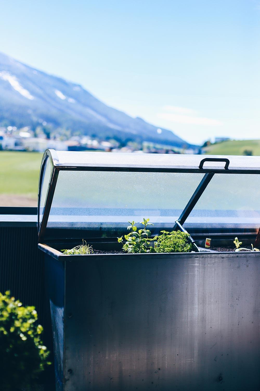 Hochbeet Tipps Anlegen Bepflanzen Und Leckeres Gemuse Ernten