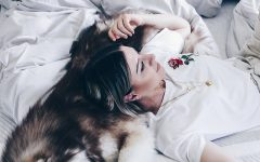 Goldene Tipps für einen erholsamen Schlaf, Leesa Matratze Test, Leesa Erfahrungen, erholsam Schlafen Tipps, wie wichtig ist Schlaf für den Körper, Tipps für einen entspannten Schlaf, Matratzen Test, Erfahrungsbericht, Interior Blog, www.whoismocca.com