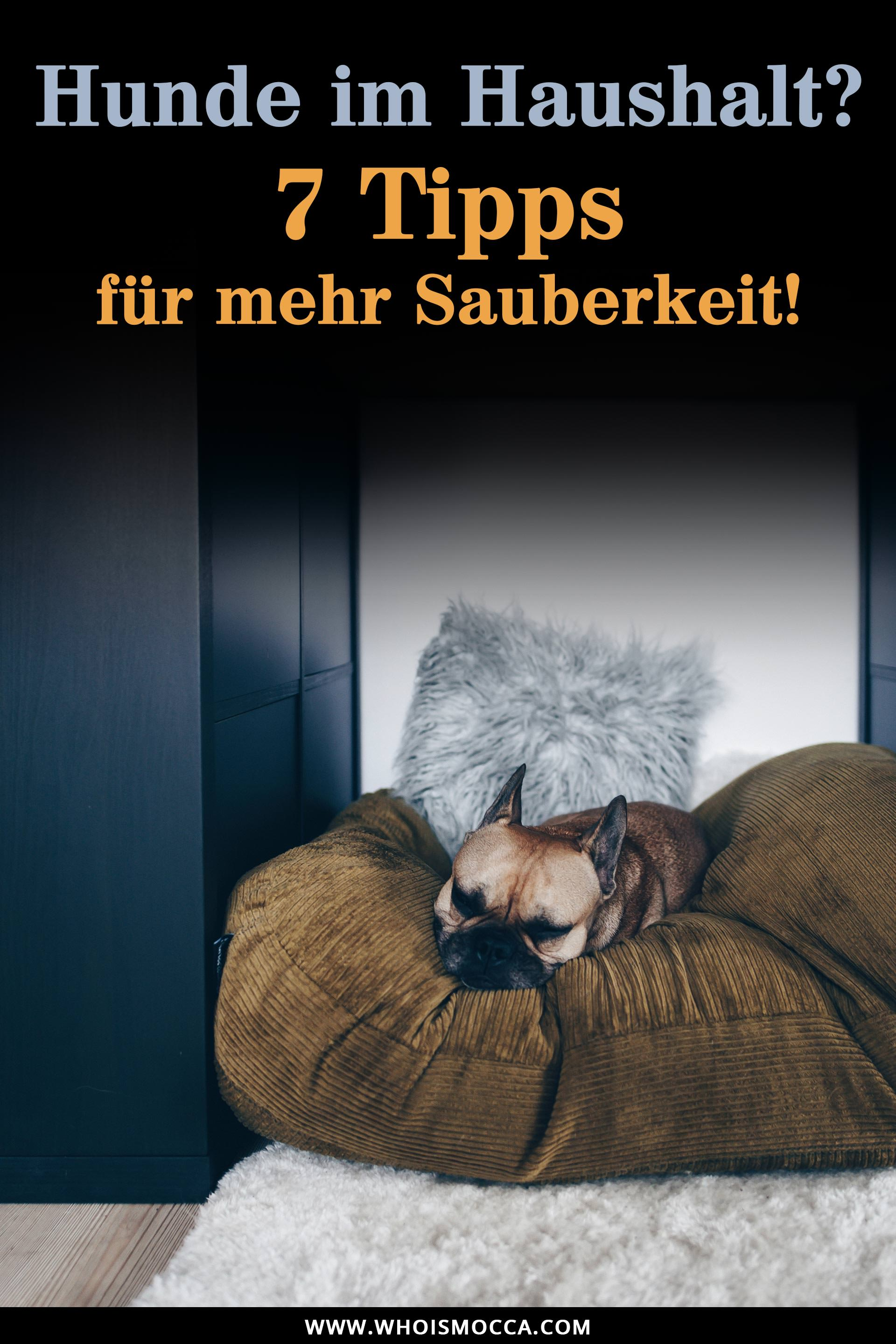 sauberer haushalt mit hund 7 tipps f r ein reinliches. Black Bedroom Furniture Sets. Home Design Ideas