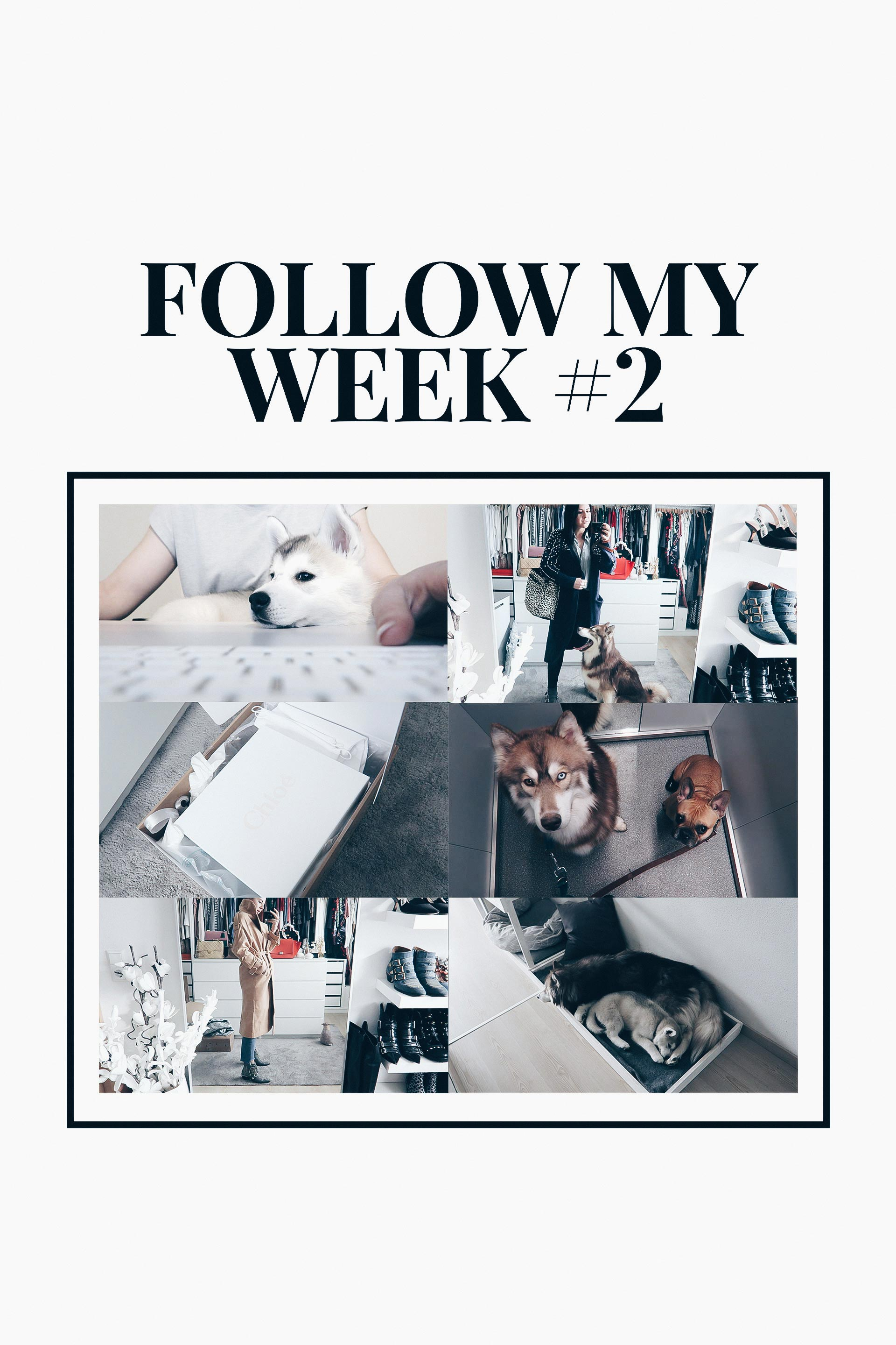 Follow My Week, Weekly Vlog, Vlogs auf Deutsch, Vlogger Österreich, Leben und Alltag mit Hund, Blogger Home Office, Arbeitsalltag, Shopping Haul, Ankleideraum, www.whoismocca.com